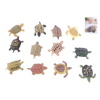 Schildkröte im Beutel