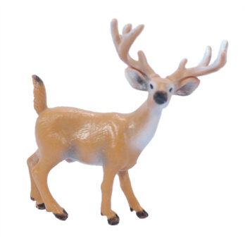 Hirsch mit weißen Schwanz