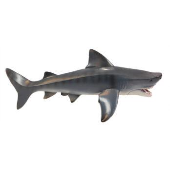 Großer Tigerhai