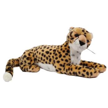 Liegender Gepard
