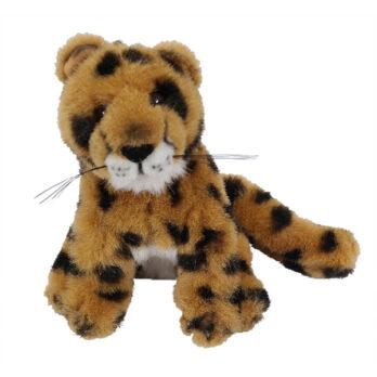 Gepard sitzend
