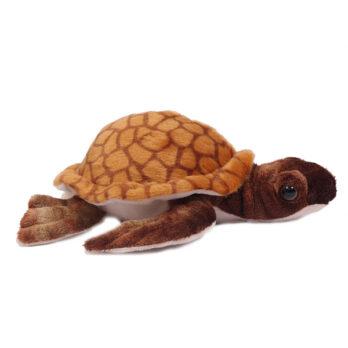 Braune Schildkröte