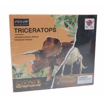 Dinosaurier Fossil – Archäologische Ausgrabung Triceratops (kleine Box)