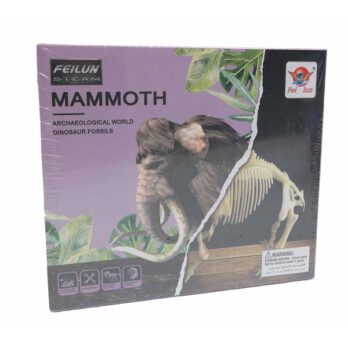 Fossil – Mammut