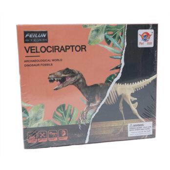 Dinosaurier Fossil – Velociraptor